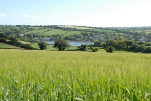 Self Catering Cornwall - Restronguet Barton