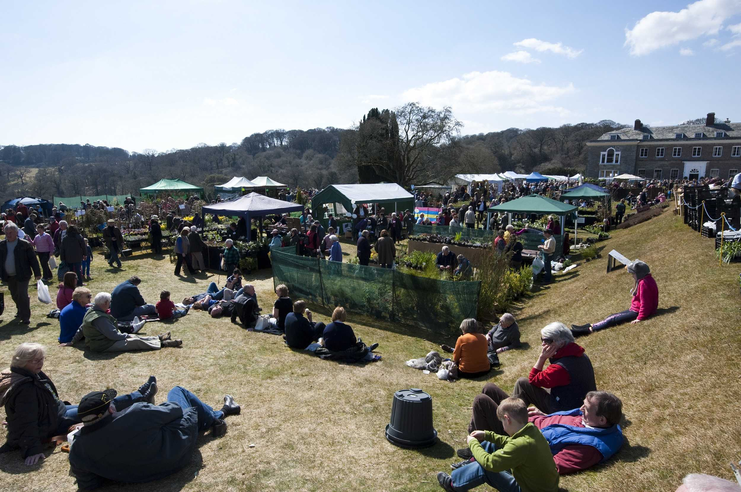Things to do in Cornwall - Spring Flower Show