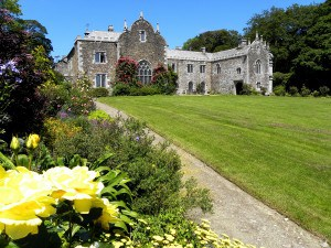 Campsites in Cornwall - Trewan Hall