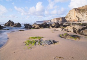 Beaches in COrnwall - Porthtowan
