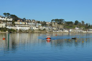 Polruan Cottages - self catering Cornwall