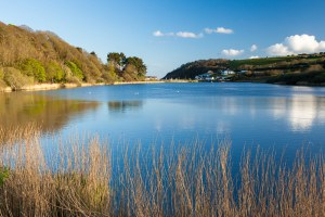 Places to see in Cornwall - Swanpool nature reserve
