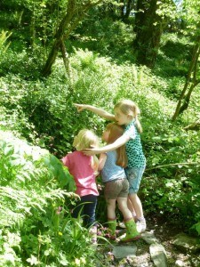 Days out in Cornwall - Carnglaze Caverns
