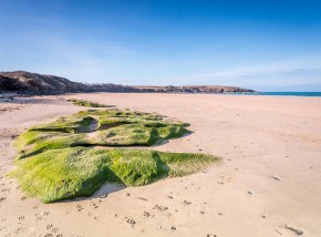 Beaches in Cornwall - Harlyn Bay
