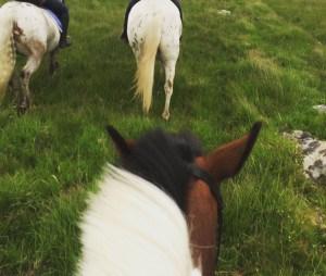 Poldark Trail with Hallagenna Riding School