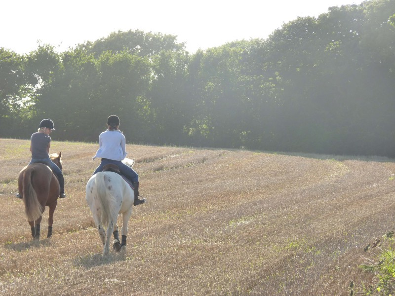 Things to do in Cornwall - Horse back riding