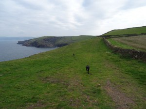 Places to see in Cornwall - Port Quin