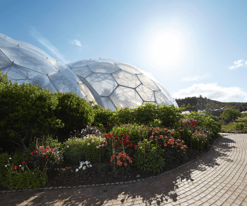 The biomes at Eden
