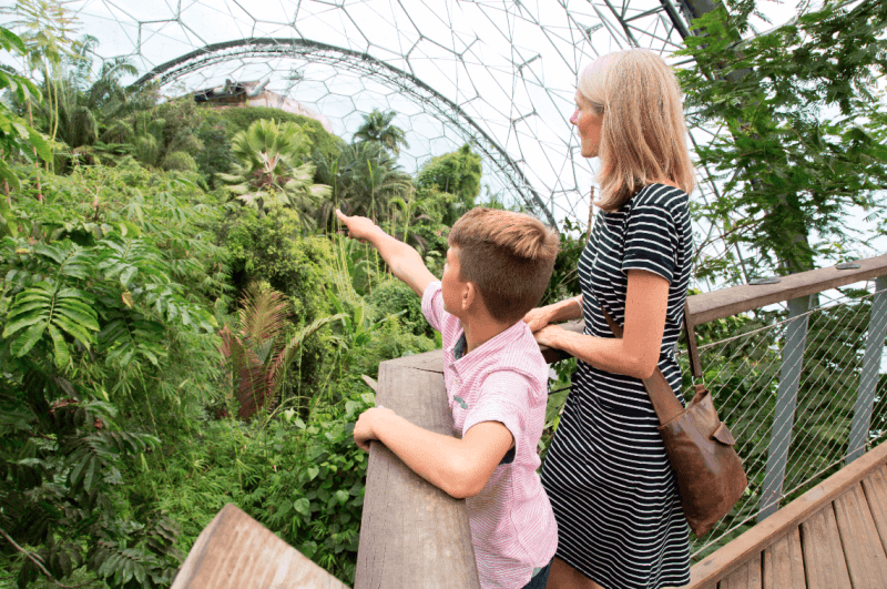 The rainforest biome at Eden