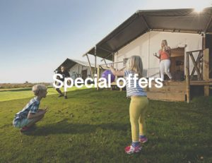 John Fowler special offers